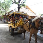 The Gili Trawangan Taxi