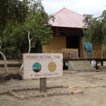 Komodo National Park at Rinca Island