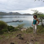 The Komodo Island Harbour view